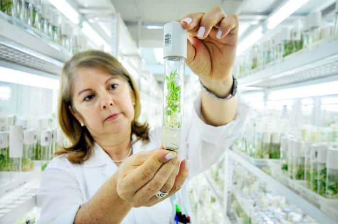 MSc Biosciences Research Fellow Posts @ Assam Agricultural University
