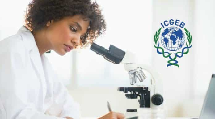 Arturo Falaschi ICGEB PhD Fellowship Programmes (Life Sciences)